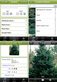 dirr s tree and shrub finder from timber press