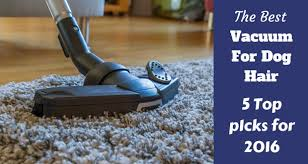 best vacuum for dog hair top 5 for 2017