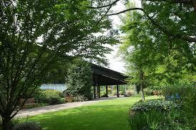 Botanic Gardens Dundee Dundee Botanic Garden Endowment Trust By Creating We Think By