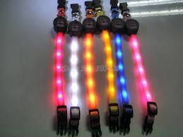 collar light for small dogs new flashing dog collars light up led pet collar colorful 12mm width