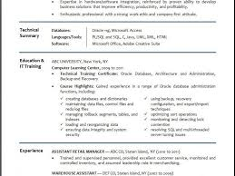 Oracle Dba Resume Format For Freshers Dba Resume Summary 100 Images Dissertation Topics In Hr