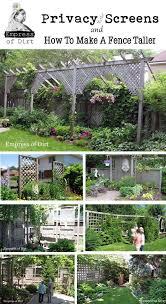 Garden Privacy Screen Ideas 47 Best Garden Privacy Ideas Images On Pinterest Garden