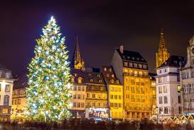 best trees in europe europe s best destinations