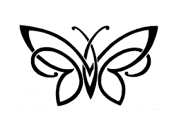 simple butterfly drawing pencil drawings of flowers and