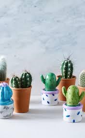 Cute Succulent Pots 606 Best Cacti Images On Pinterest Cacti Cactus And Cactus
