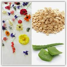 All Natural Flower Food 42 Eco Friendly All Natural Cleaning Products You Can Make At Home