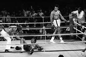 boxer dog in boxing gloves muhammad ali u0027s hometown says goodbye after the boxer dies aged 74