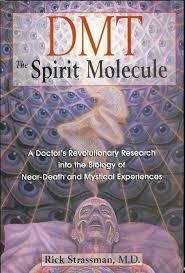dmt the spirit molecule by سرفراز حسین مست issuu