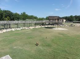 frank buck zoo gainesville having fun in the texas sun