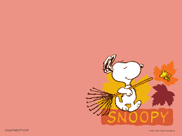 Snoopy Flags Snoopy Cartoons Wallpapers