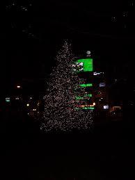 pre cut christmas trees columbus ohio home design ideas