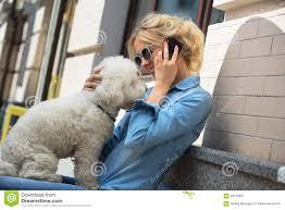bichon frise therapy dog cute blonde with bichon frise white dog stock photo image 58726621
