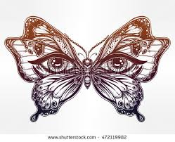 butterfly eye stock images royalty free images vectors