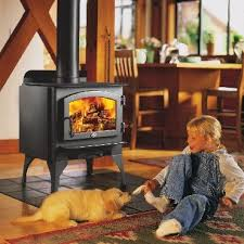 Fireview Soapstone Wood Stove For Sale 15 Best Wood Stove Options For Small Cabin Images On Pinterest