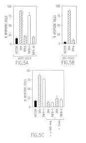 patent us8329179 death domain containing receptor 4 antibodies