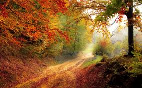Beautiful Wallpapers Autumn Beauty Wallpapers Autumn Beauty Pc Backgrounds 47 54zt