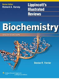 Download Ross And Wilson Anatomy And Physiology Download Lippincott Biochemistry Pdf Free For Download Lippincott
