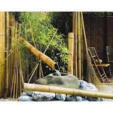 abri jardin bambou tuteur tomate bambou plastifié leroy merlin