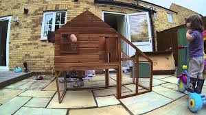 Guinea Pig Hutches And Runs For Sale Outdoor Guinea Pig Hutch Construction Timelapse Youtube