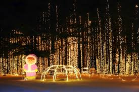 yogi bear christmas lights the carnival of lights in caledonia is a mesmerizing display with