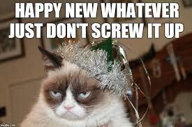 Happy New Year Cat Meme - new year imgflip