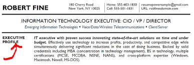 Profile Example On Resume by Executive Summary Tips Resumepower