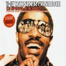 stevie tribute cover albums