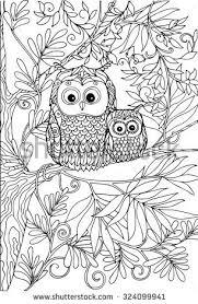 1289 best owls black u0026 white images on pinterest owl