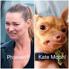 Tuna The Dog Meme - saw this picture of kate moss when i was searching for something
