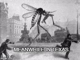 Meanwhile In Texas Meme - mosquito attack imgflip