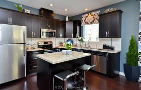 Granite Countertops And Cabinet Combinations Granite Countertops Dark Cabinets Stainless Steel Appliances