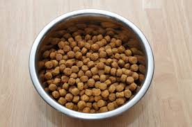 how to tell if your dog has a food allergy u2013 woof and whiskers