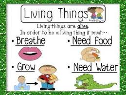 Characteristics Of Living Things Worksheet Middle Living And Non Living Things Activity Set Ccss Activities
