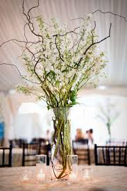 best 25 curly willow centerpieces ideas on curly