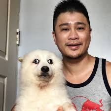 Asian Dog Meme - confused dog can t decide where to stare so photoshoppers help him