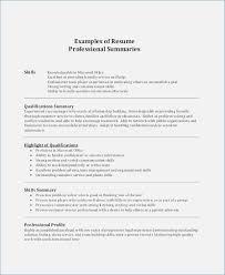 summary for resume exles professional summary for resume exles globish me