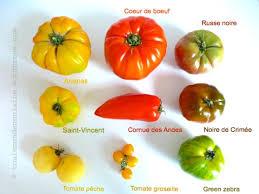 la cuisine de vincent superb la cuisine de vincent 10 tomates variecc81tecc81s jpg w 551