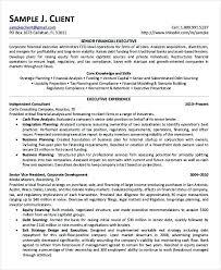 Director Of Development Resume Venture Capital Resume Sample Vice President Of Sales Director Of