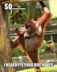 Funny 30th Birthday Meme - saturday memes dirty birthday pinterest saturday memes memes