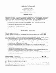 auditor resume exles 15 best of staff auditor resume sle resume sle template and