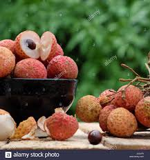 fruit similar to lychee close up of litchi fruit or lychee fruits a tropical agriculture