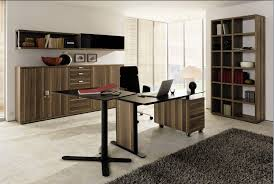 Personal Office Design Ideas Modern Home Office Furniture Onyoustore Com