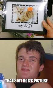 I Like Food And Sleep Meme - tmw you find your dog sleeping on your keyboard by mr nox meme center