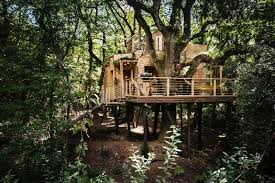 top 5 uk u0027s best treehouse escapes about time magazine