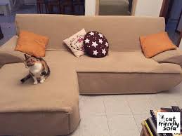 gatti divani copridivano antigraffio per divano cat friendly sofa