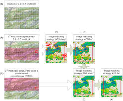 remote sensing free text countrywide stereo image