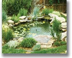 Green Thumb Landscaping by Landscaping By Green Thumb Landscaping 970 686 1278