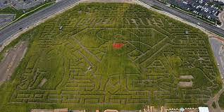 cornbelly s recognizes all heroes or not with corn maze