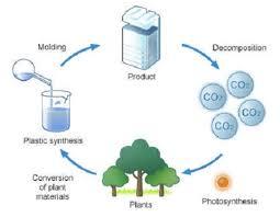 bioplastic research paper bioplastic research paper layerssuccessful gq