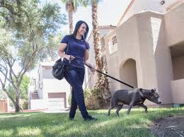 dog walking app wag now available in las vegas u2013 las vegas review